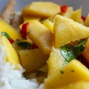 Indisches Hühnchen-Mango-Curry
